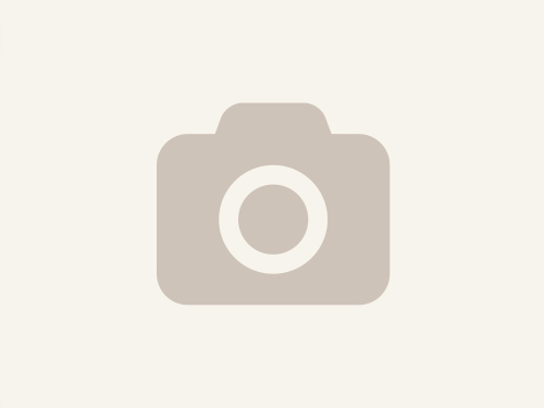 Symbolfoto für Genuß-Schinken vom Sonnenschwein